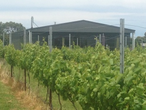 Harman Wines Cellar Door through Vines